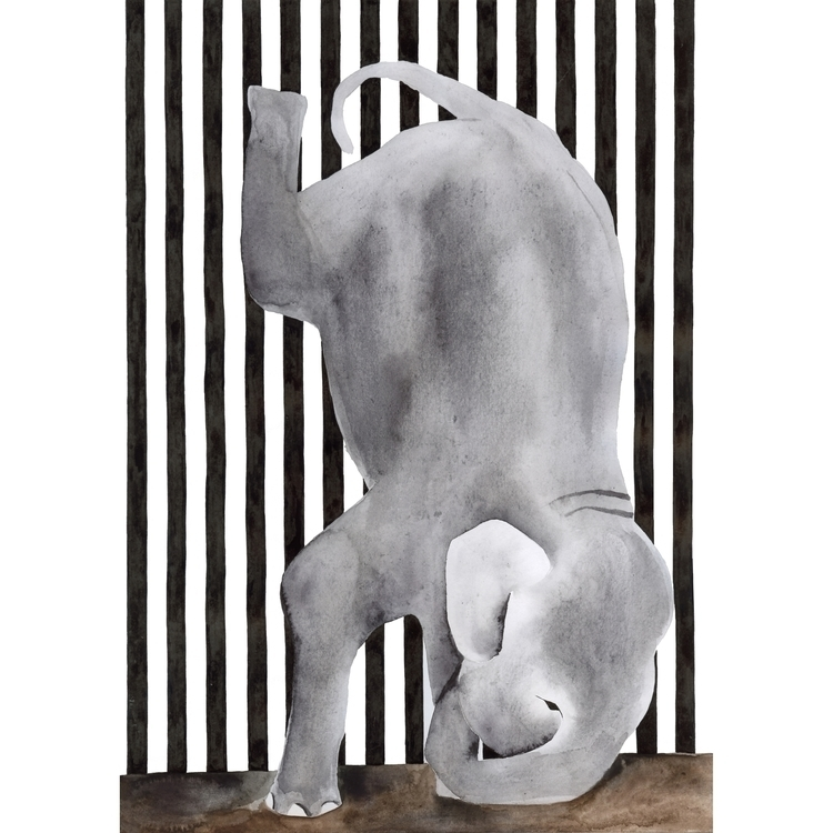 elephant, blackandwhite, grey - robincottage   ello