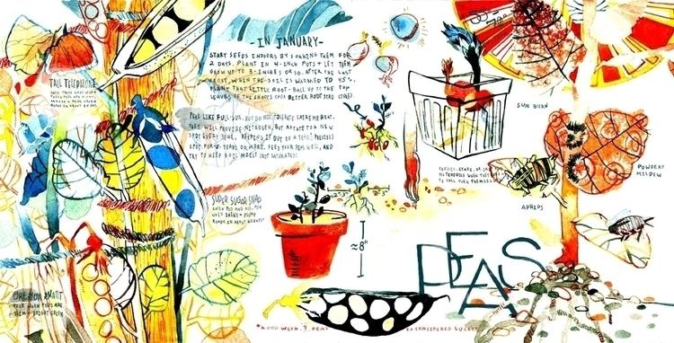 grow peas - garden, gardening, diy - buenobonbien | ello