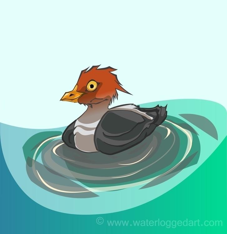 waterfowl, illustration, illustrator - waterloggedart | ello