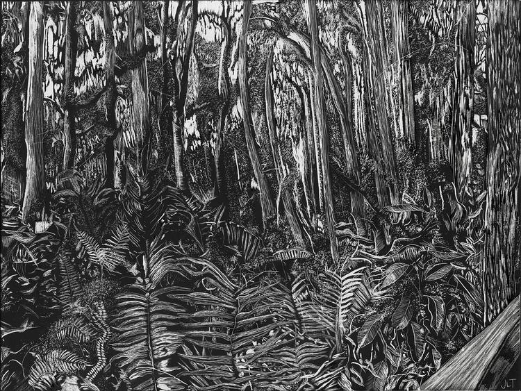 Swamp - illustration, scratchboard - jtiedemann | ello