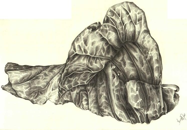 Dry Leaf - observationaldrawing - vanniegama | ello
