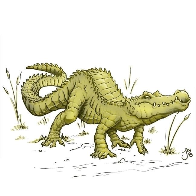 colored killer croc - illustration - jasonmartin-1263   ello