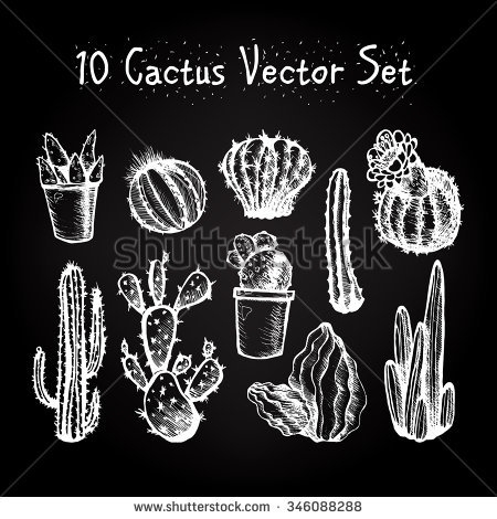 Hand Drawn Isolated Cactuses Se - barsrsind | ello
