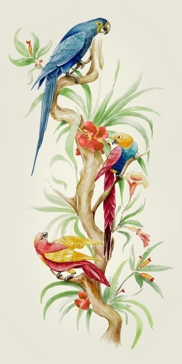 parrots, birds, rainforest - bccreativity | ello