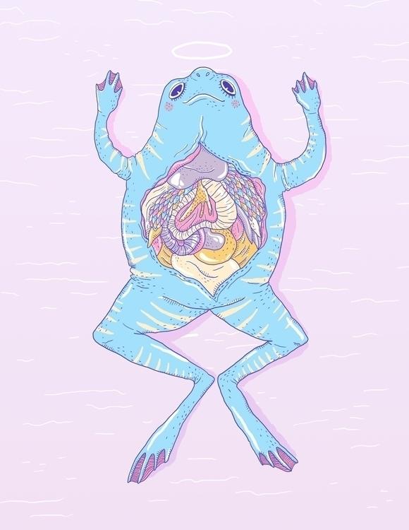 Biopsia - frog, toad, animal, guts - sonialazo | ello
