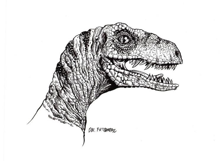 Velociraptor - dinosaur, penink - dwfrydendall   ello