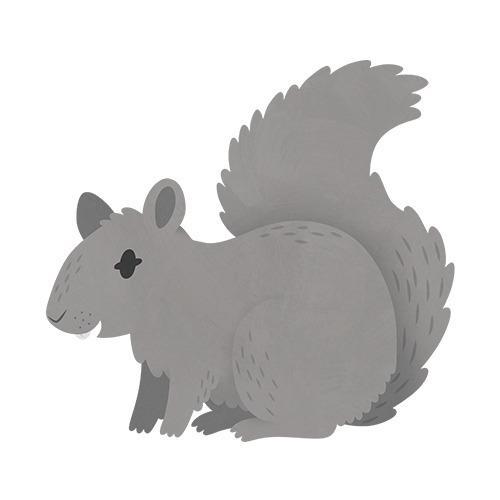 Squirrel (English Countryside b - clairestamper | ello