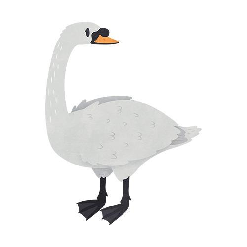 Swan (English Countryside book - clairestamper | ello