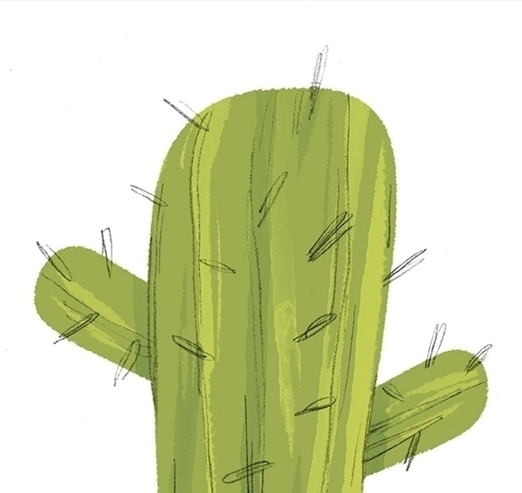 desert, cactus - cmouta | ello