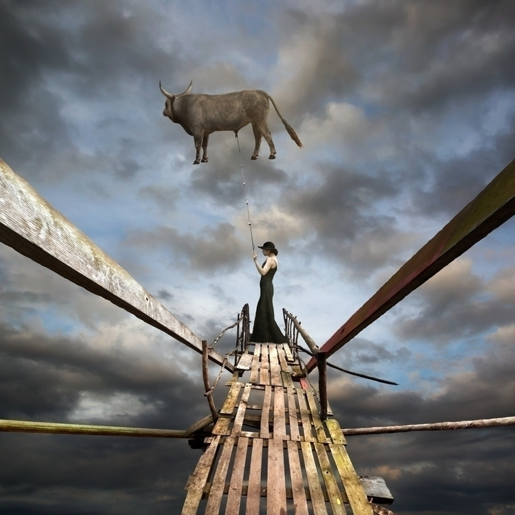 Catch Bull - bull, woman, pier, sky - kwadrart | ello