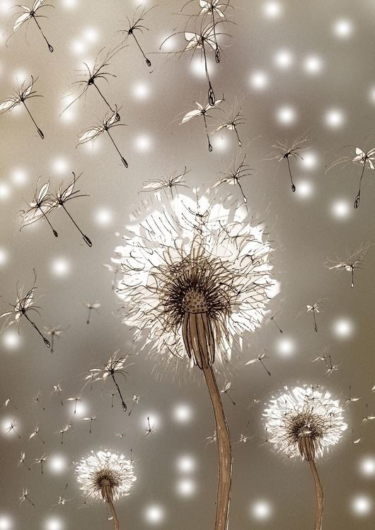 Dandelions - dandelion, illustration - rutgervandeelen | ello