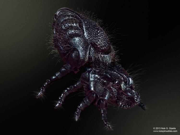 Dustmite - dustmite, bug, creature - aumakua | ello