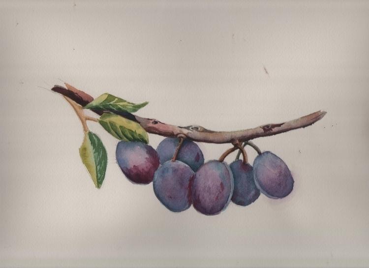 plum - watercolor, watercolour, aquarelle - artolgash | ello