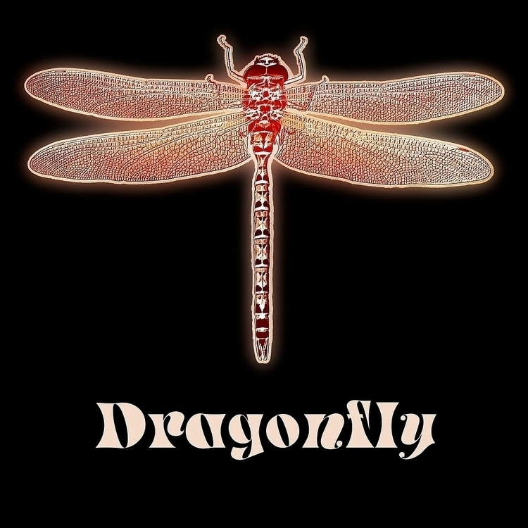 Glowing Image big dragonfly - insect - leo_brix | ello
