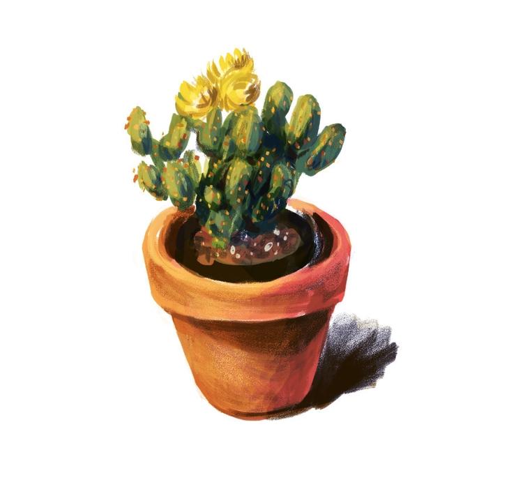 Cactus Spitpaint Day 3 - cactus - mirako-8379 | ello
