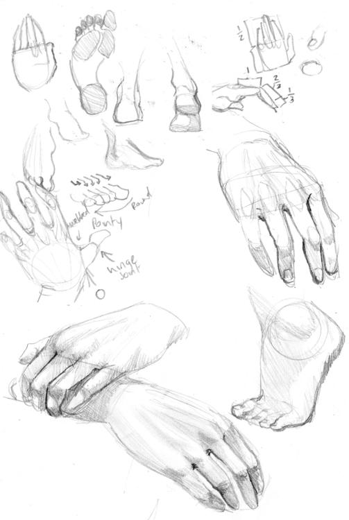 Sketch book hand feet studies - sketchbook - cmarling | ello