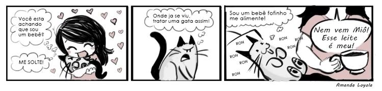 cats, comicstrip, baby, pet - amandaloyolla | ello