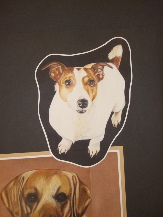 Wee Woody - drawing, portrait, colourpencil - stevenhart | ello