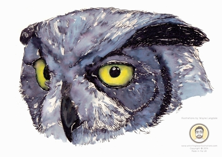 Owl water colour ink - owl, watercolor - whistlingbear | ello