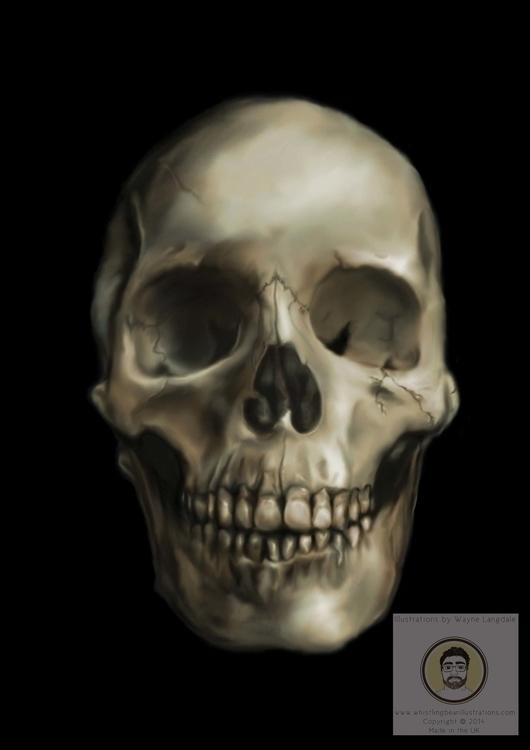 Skull Adobe Photoshop - skull, photoshop - whistlingbear | ello