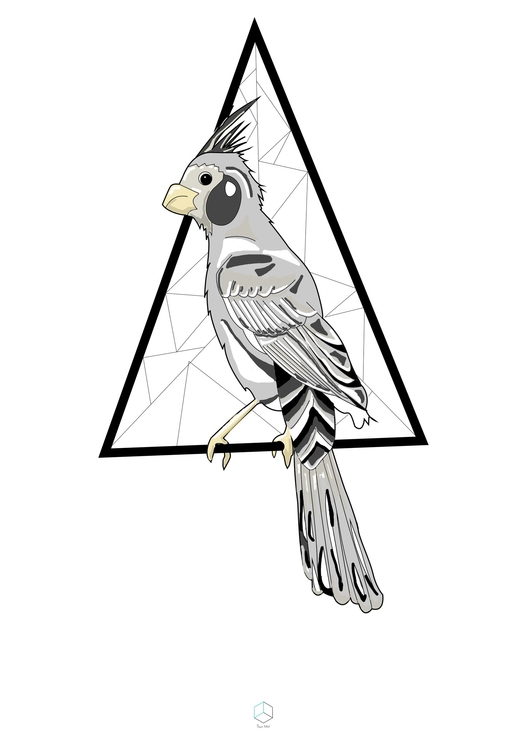 Grey parrot - perroquet, perroquetgris - marionbelliot | ello