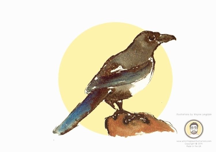 Magpie Birds project created in - whistlingbear | ello