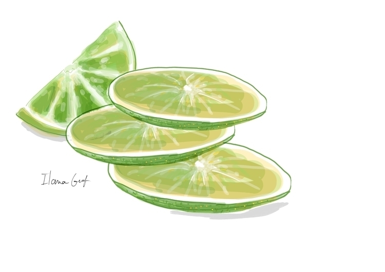Lemon slices - lemon, illustration - ilanagraf | ello