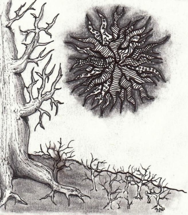 Woods - conceptart, illustration - cheechwiz | ello