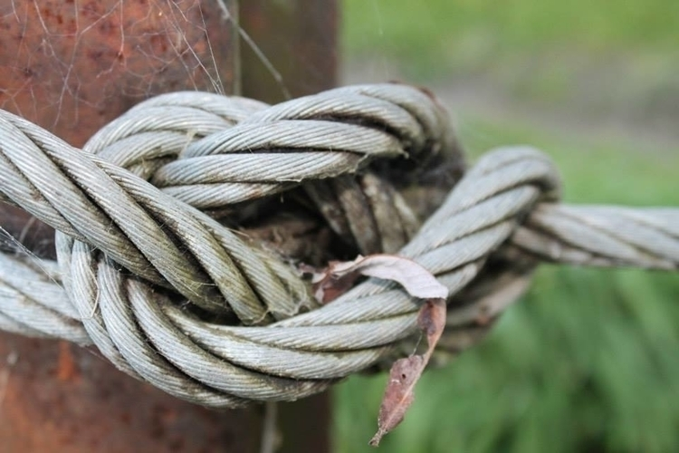 Wire Knot - photography, wire, knots - ashleyr-6440 | ello