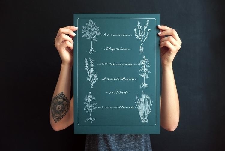 Herbs Handlettering Poster - herb - marion-1392 | ello