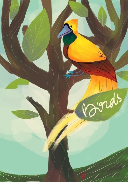Birds Paradise - illustration, children'sillustration - hedif | ello