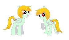 cute pose - pony, mylittlepony, mylittlepony - sammyjackles | ello