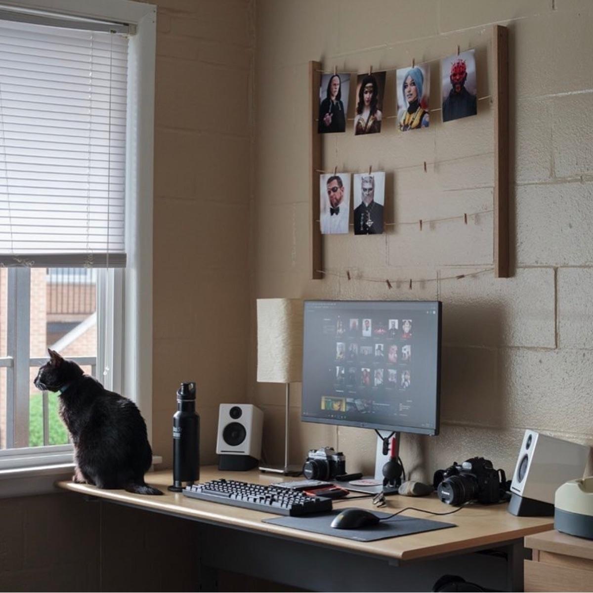 Setup, pc, mac, desk, cat, black - edwincanales | ello
