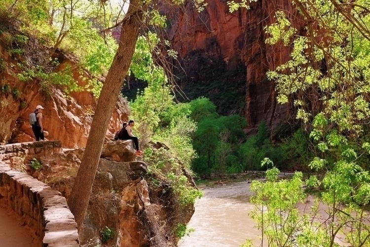Zion National Park - fujifilm, fujix100t - adamcbartlett   ello