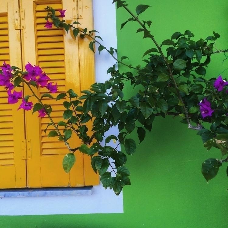 greece, colors - mauspaiva   ello