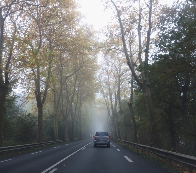 autumn, misty, france, roadtrip - mauspaiva | ello