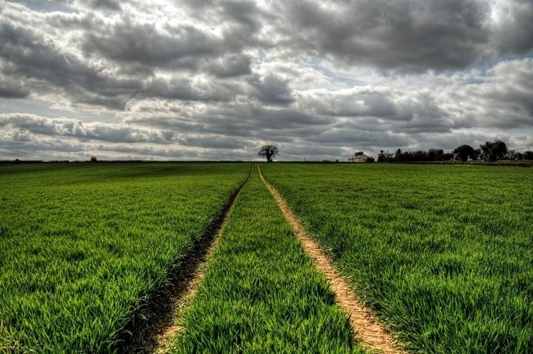 Tracks Crop - crop winchester,  - neilhoward | ello