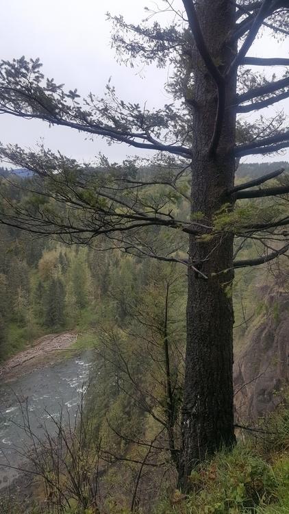Snoqualmie river WA - littleduffer20 | ello