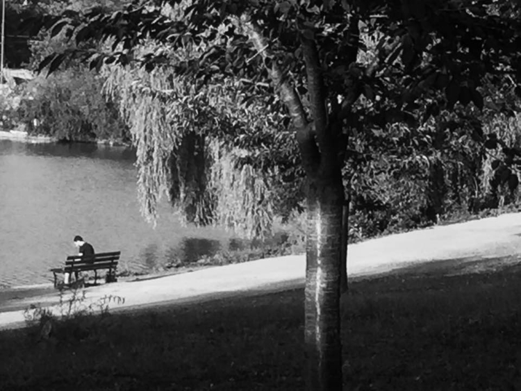 Stanley Park, Beaver Lake. (201 - michaeloo | ello