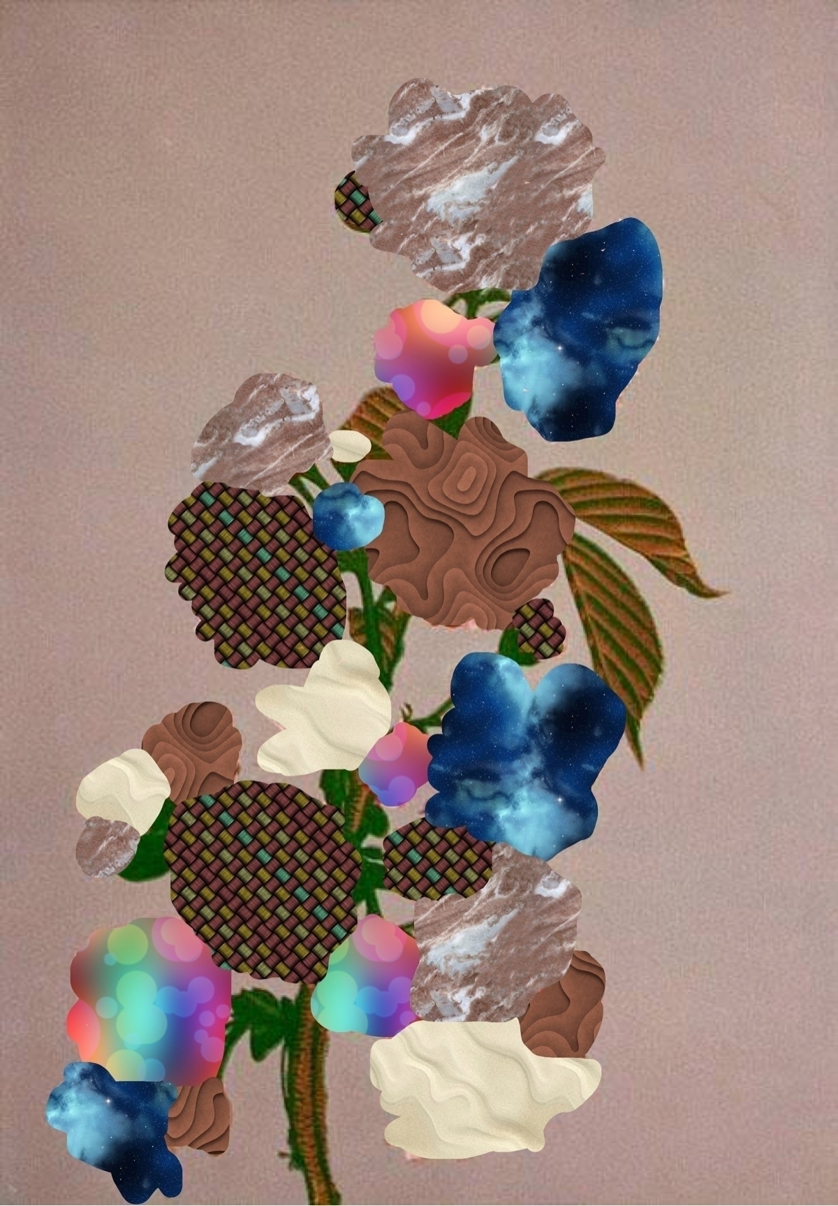 Flowers JulienMartin - julienmartin | ello