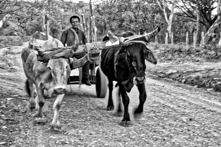 Boyero, Nicaragua - uninstaller   ello