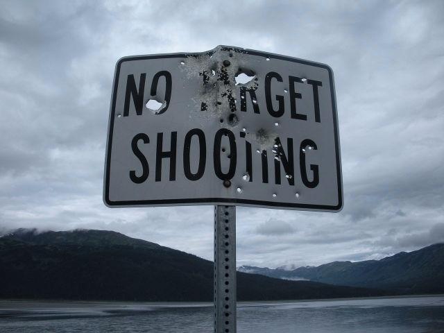 Guide Shooting Targets shooting - aliengearholsters | ello