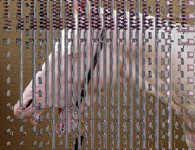 albino - vff2015, donelektro, netart - donelektro | ello