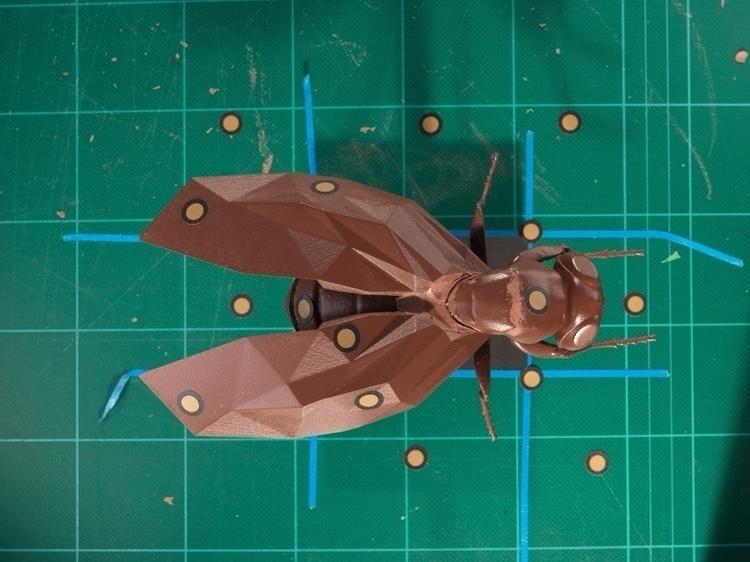 fly, cinema4D, C4D, 3D, 3Dmodeling - antonioarcadu | ello
