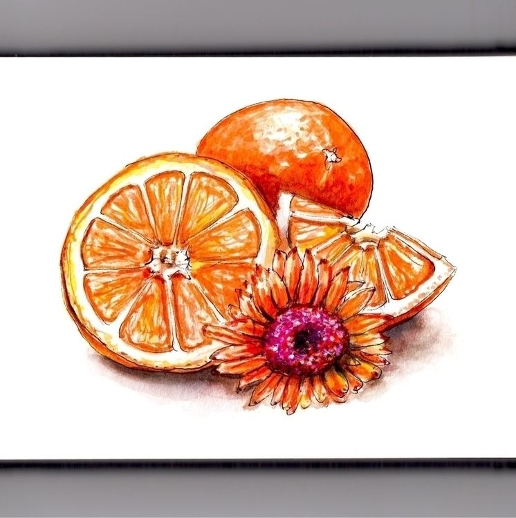 Flower Fruit - watercolor, watercolour - doodlewash | ello