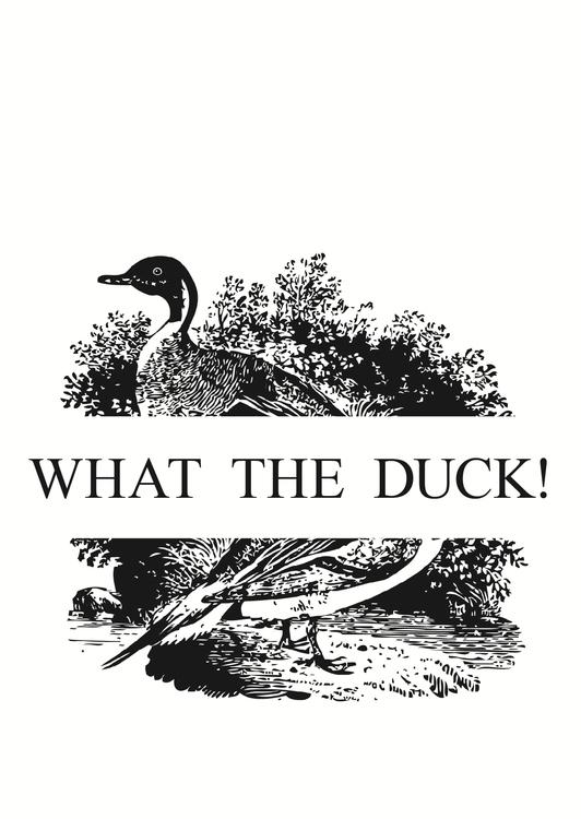 duck - grillbambi_hirschhausen | ello
