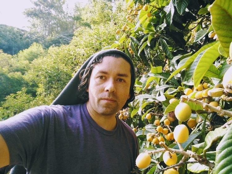 loquats, farminglife, sweetandwild - sydbius | ello