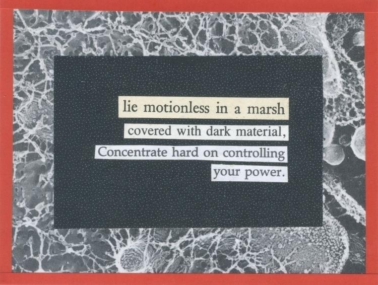 """""""lie motionless marsh covered d - wakest   ello"""