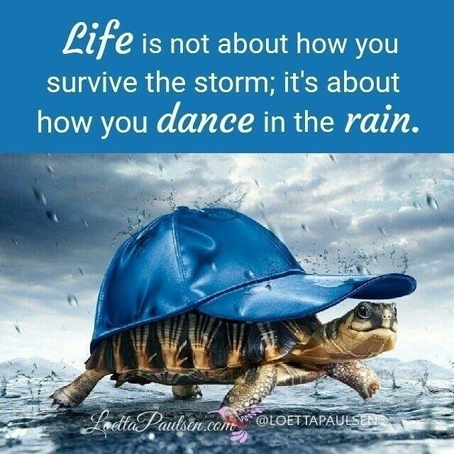 Life survive storm; dance rain - esquirephotography | ello