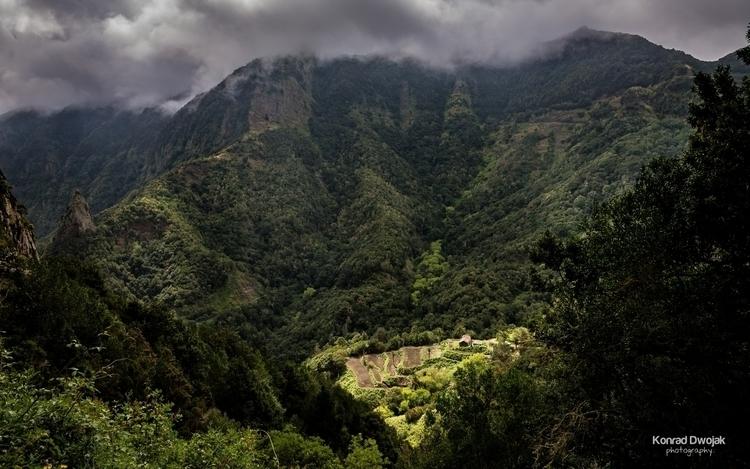 Agriculture terrace mountains  - konradphoto | ello